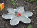 fågelbad blomma